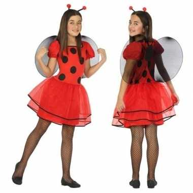 Dierenpak lieveheersbeestje verkleed jurk/jurkje meisjesoriginele